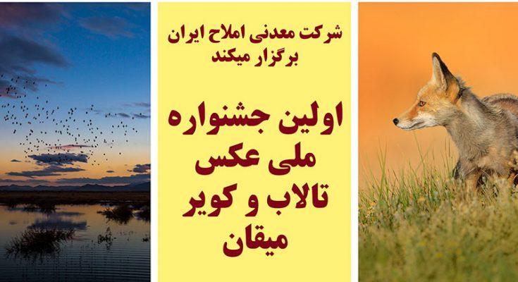 اولین جشنواره ملی عکس تالاب و کویر میقان