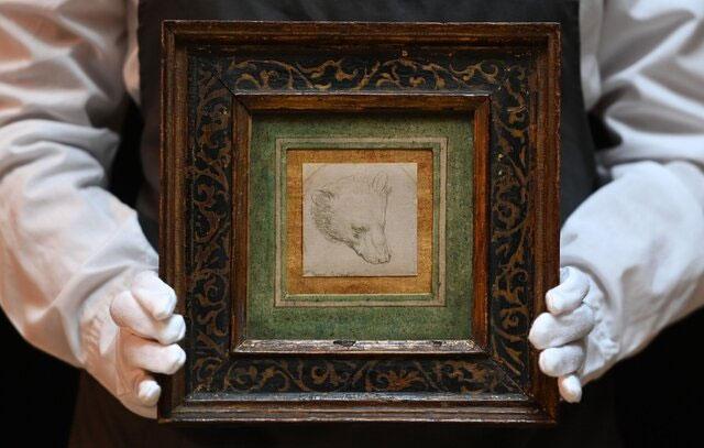 تابلوی خرس (سرخرس) «لئوناردو داوینچی» رکورد زد
